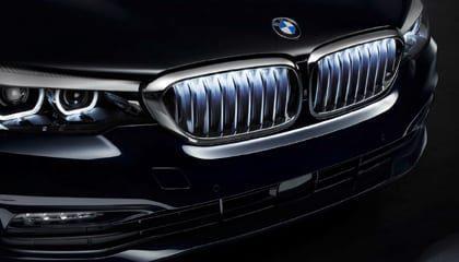 BMW Verlichte Nieren